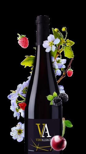 bouteille pinot noir rouge d'alsace