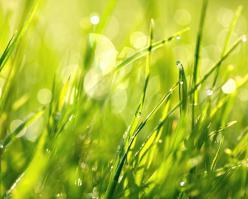 Shutterstock 283520795-sy