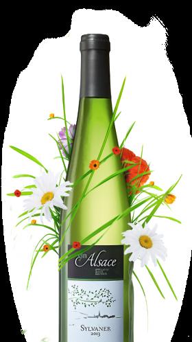 bouteille de sylvaner alsacien