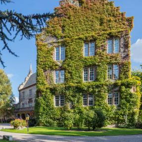 Confrérie Saint-Étienne d'Alsace