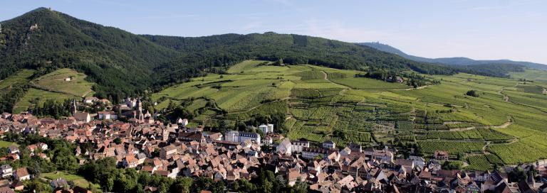 Kirchberg-ribeauville4-2