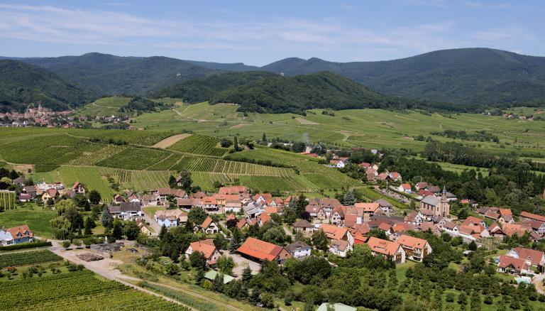 Moenchberg2