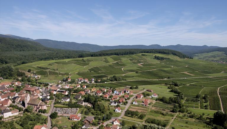Pfingstberg2