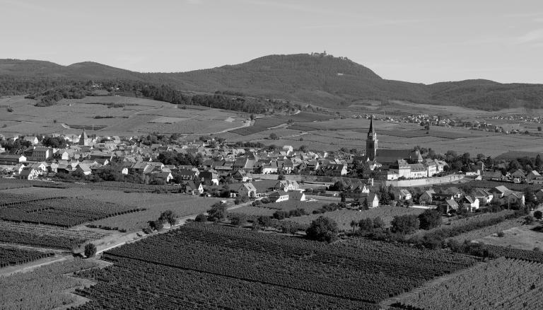 Altenbergbergheim web