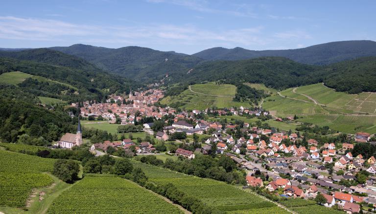 Wiebelsberg-zvardon-conseilvinsalsace-2