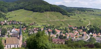 Wiebelsberg