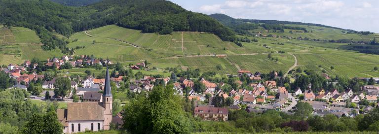 Wiebelsberg-zvardon-conseilvinsalsace