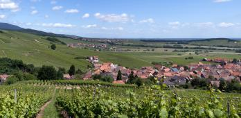 Winzenberg
