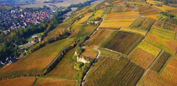 Altenberg de Wolxheim