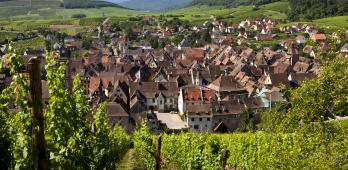 Schoenenbourg