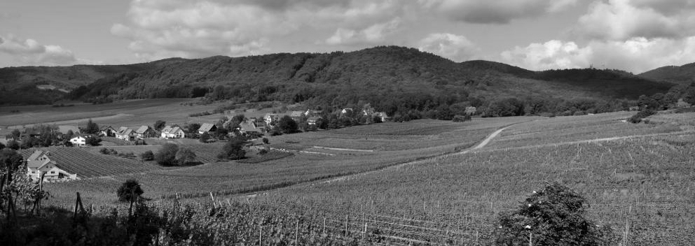 Zotzenberg