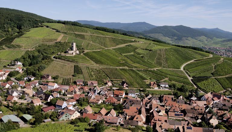 Wineck-schlossberg-zvardon-conseilvinsalsace