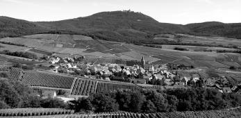 Gloeckelberg