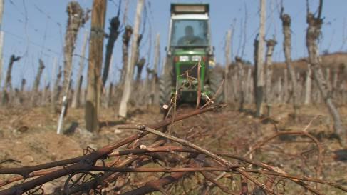 Entretien et plantation-058