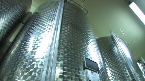 Vinification vins tranquilles-023