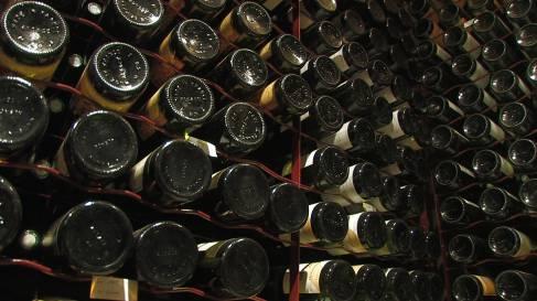 Vinification vins tranquilles-069