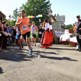 Alsace Vineyard Marathon