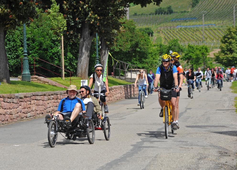 SlowUp de la Route des Vins d'Alsace