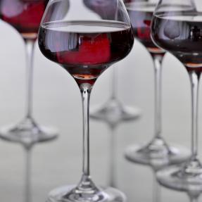 Fête du Pinot Noir
