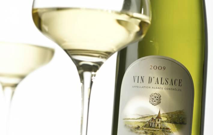 Delicious wines!