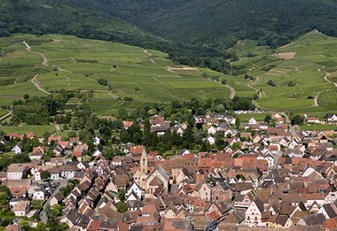 Vallée Noble d'Alsace